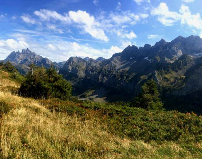 barme-suisse-vtt-bike