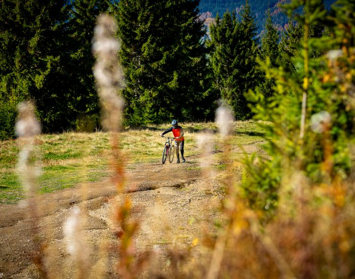 bike-experience-super-morzine